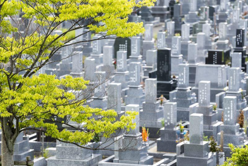 墓参りの時期
